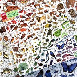 레인보우 월드 1000피스 직소퍼즐