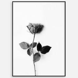 북유럽 거실 인테리어 액자 꽃그림 장미 [50x70]