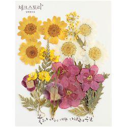 [압화 꽃모음 - A타입] 수선화랑마가렛 꽃모음