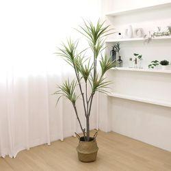 고급 인조나무 조화화분 드라세나 마지나타 180cm