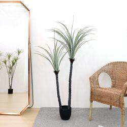 고급 인조나무 조화화분 드라세나 드라코 150cm