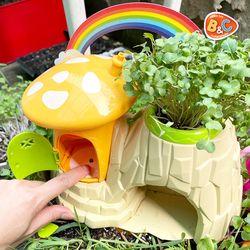 아이와 정원 꾸미기 새싹채소 포함 안개화분 키우기 가습