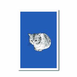 북성로 고양이 엽서 블루