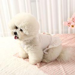 오로라펫 강아지 바니나시치마
