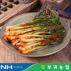 부귀농협 마이산김치 국내산 파김치 1kg