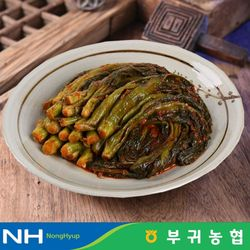 부귀농협 마이산김치 국내산 갓김치 3kg