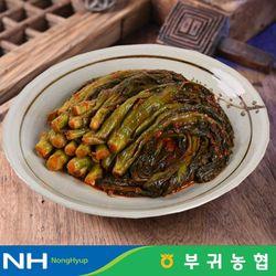 부귀농협 마이산김치 국내산 갓김치 1kg