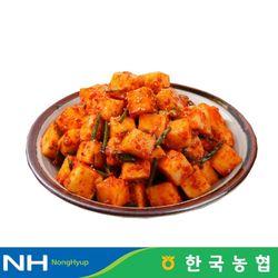 부귀농협 마이산김치 국내산 깍두기 1kg