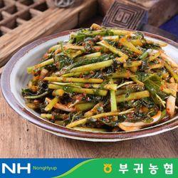 부귀농협 마이산김치 국내산 열무김치 3kg