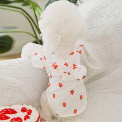 강아지 딸기원피스 시스루 프릴 드레스