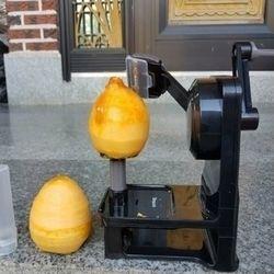 곶감 사과 과일 감 깎는 깍는 기계