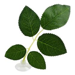 고운물 베타침대 (장미잎 대) - 인공수초 수족관장식