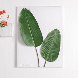 그로우바나나잎캔버스 set 80cmP 조화 인테리어 FMFUFT