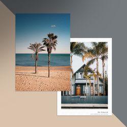 palm tree 캔버스 액자 (A2사이즈)