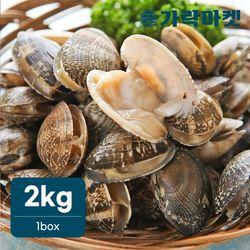 [가락마켓]국산 제철조개 바지락 2kg