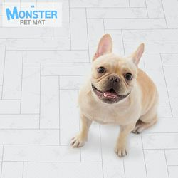 NEW 몬스터 엘라스토머 미끄럼방지 강아지매트 롤매트