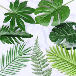 잎사귀 나뭇잎 모음 유칼립투스 아레카 야자 몬스테라 셀렘