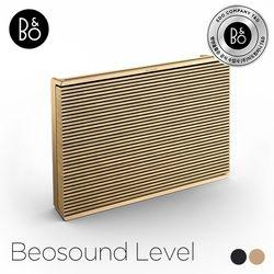 [공식수입]Beosound Level Gold Tone 블루투스 스피커