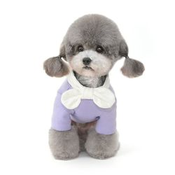 화이트리본 강아지 올인원
