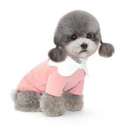 화이트꽃잎카라 강아지 티셔츠