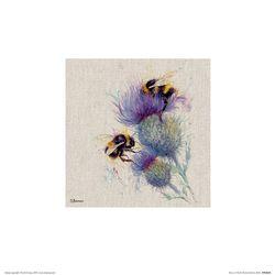 PPR48295 Jane Bannon - Bees on Thistle 포스터