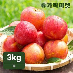 [가락마켓]국내산 노지 후무사 자두 3kg (특)
