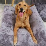 로마펫 소형견 대형견 딥슬립 푹신 강아지 매트 쿠션 방석 침대