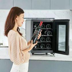 샤오미 VINOCAVE 미니 와인 냉장고 12병