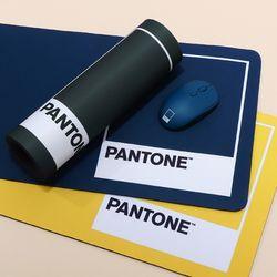 PANTONE 팬톤 마우스 장패드