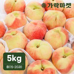 [가락마켓]아삭한 딱딱이 복숭아 5kg(중)