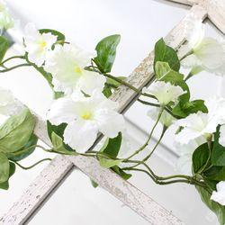 나팔꽃 넝쿨 가지