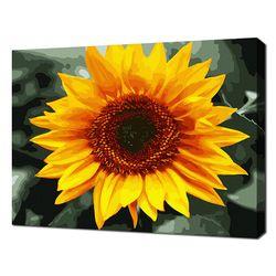 [명화그리기]4050 Sunflower 20색 정물화