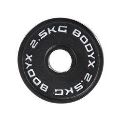 바디엑스 [낱개] 케이언 중량원판 2.5kg 홀 50mm 주물 아이언