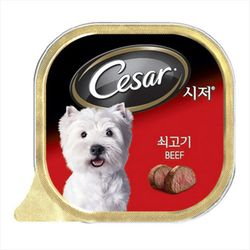 강아지간식 캔 시저 쇠고기 100g 5개 강아지밥