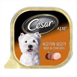 강아지간식 캔 시저 쇠고기와 닭고기 100g 5개 강아지밥