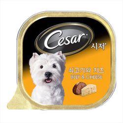 강아지간식 캔 시저 쇠고기와 치즈 100g 5개 강아지밥