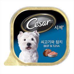 강아지간식 캔 시저 쇠고기와 참치 100g 5개 강아지밥