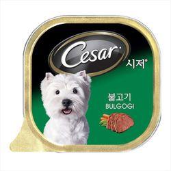 강아지간식 캔 시저 불고기 100g 5개 강아지밥