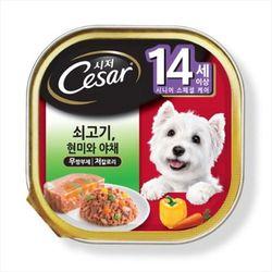 강아지간식 캔 시저 14세이상 쇠고기 현미와야채 100g 5개