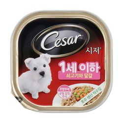 강아지간식 캔 시저 퍼피 쇠고기 계란과당근 100g 5개
