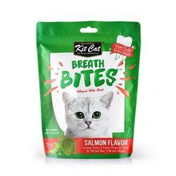 고양이간식 킷캣 브레쓰바이트 연어맛 60g 3개 고양이밥