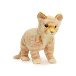 7230 고양이갈색 동물인형30cm.L