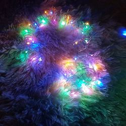 인테리어 조명 LED 와이어 전구 50구 건전지형