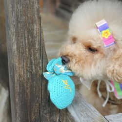 개달당 복주머니 바스락 삑삑 강아지장난감 이갈이장난감