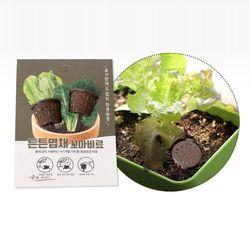 화분에 꼽아쓰는 비료 2입 엽채식물 채소 상추용