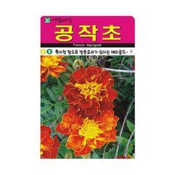 AR 공작초씨앗 100립 공작초 꽃씨앗 방충효과 꽃씨
