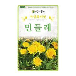 민들레씨앗 500립 노랑민들레 금황색 꽃씨앗 야생화