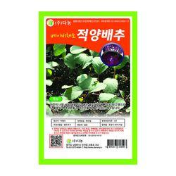 베이비적양배추씨앗 30g 베이비채소 베이비적양배추