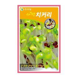 새싹치커리씨앗 10g 새싹치커리 새싹채소씨앗
