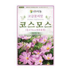 연분홍색 코스모스씨앗 100립 코스모스 꽃씨앗